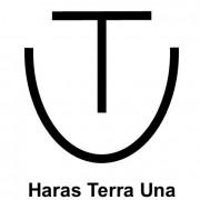 Haras Terra Una